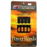 Kawasaki Power Reed Kit KX 85  100 2001-2016 Boyesen Motorcycle 6124