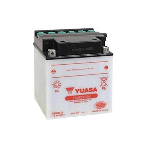 Yuasa YB30CL-B Performance Battery