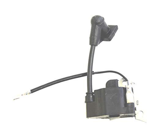 OakTen Replacement Ignition Coil for Honda GX25 FG110 HHT25S WX10K1 Repl Honda 30500-Z0H-013 30500-Z0H-023