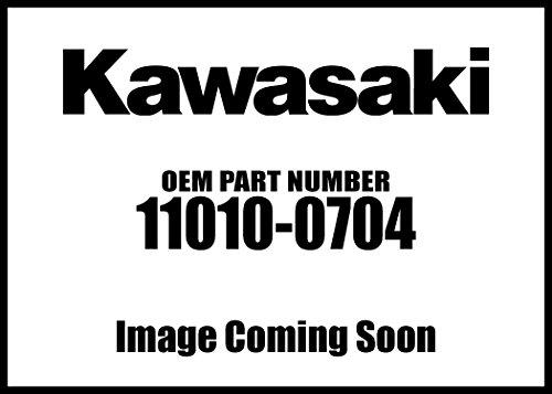 Kawasaki Filter-Assy-AIR 11010-0704