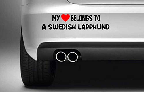 Poloran My Heart Belongs to A Swedish Lapphund Die Cut Graphic Decals Vinyls Funny