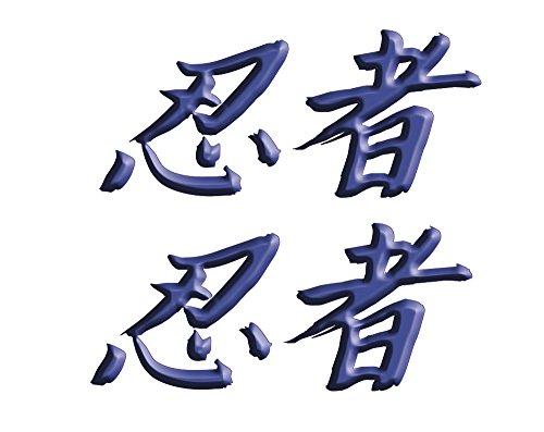 Size is 26 tall x 6 wide Kawasaki Ninja ZX10 ZX12 ZX14 ZX9 ZX6 600 1000 ZX6RR 250R 300 Ninja Kanji Decal sticker set Blue