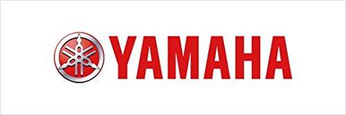 Yamaha 5VX258060000 Brake Pad Kit