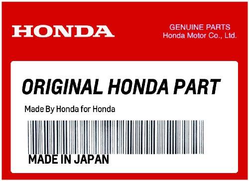 Honda 08P73-MJC-A00 Carbon Fiber Exhaust Protector