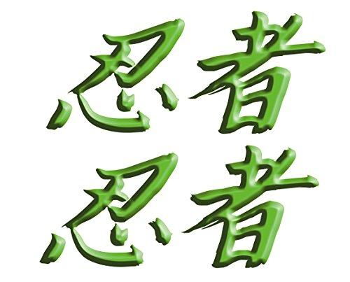 Size is 26 tall x 6 wide Kawasaki Ninja ZX10 ZX12 ZX14 ZX9 ZX6 600 1000 ZX6RR 250R 300 Ninja Kanji Decal sticker set Green