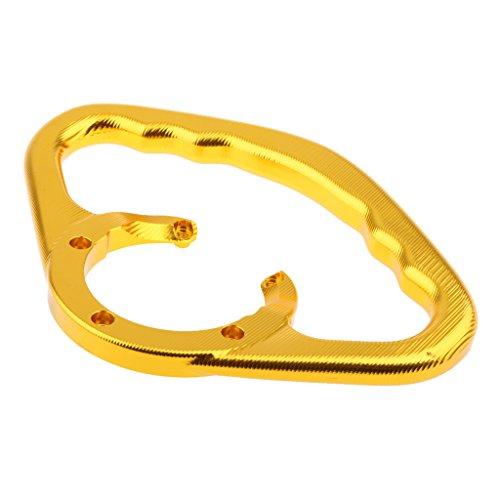 Dolity Passenger Handgrips Tank Grab Bar Handles Armrest for Kawasaki 650RER-6 ZZR1200 2002-2005 Z1000 2003-2012 - Gold