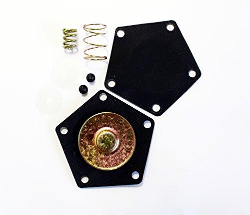 Suzuki King Quad 300 Quadrunner 250 Fuel Pump Rebuild Kit - Repairs OEM 15100-19B00 15100-19B01