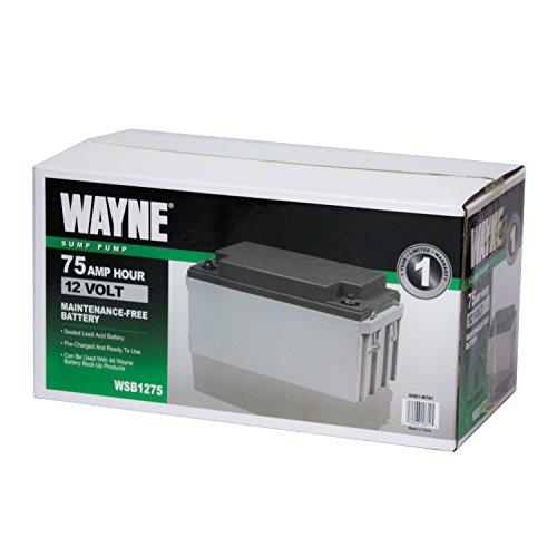 Wayne WSB1275 75Ah AGM Sealed Lead Acid Battery