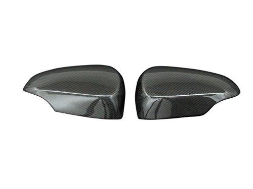 BRIGHTZ Aqua NHP10 realistic carbon door mirror cover M type ANK-0704-DM NHP P10 10 15952