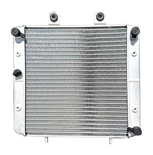 YourRadiator YR050 - New OEM Replacement ATV Radiator
