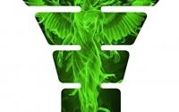 Angel-Fire-Green-3d-Gel-Motorcycle-Gas-Tankpad-Kawasaki-Ninja-Zx-Suzuki-Gsxr-Honda-Cbr-Yamaha-Yzf-Triumph-Motorcycle4.jpg